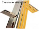 Nataniko Накладки на пороги Citroen C-Elysee 2013-
